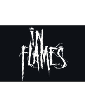 In Flames Kinder T-Shirt Logo In Flames